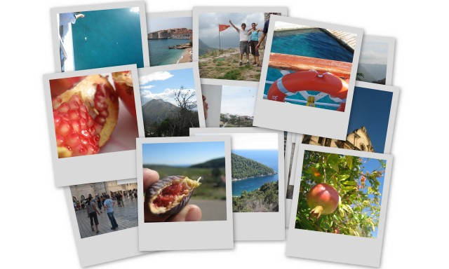 Click to check out our favorite pictures from our travels through Croatia