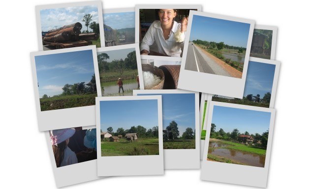 Click to check out our favorite pictures from our cycling trip through Laos